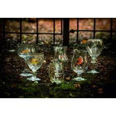 Bekende Speciaalbier Glazen Assortiment Pakket 6  Verschillende Bierglazen in 1 doos! LEUK CADEAU!